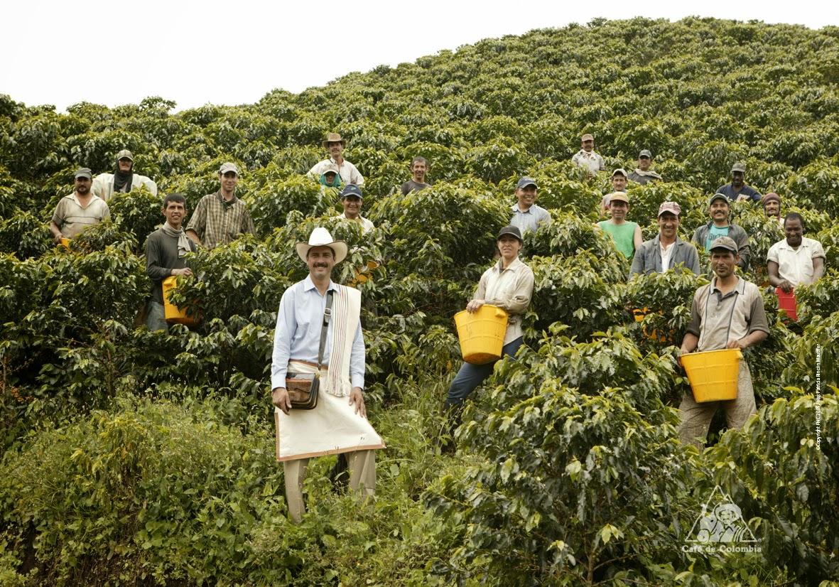 Регионы производства кофе: Колумбия